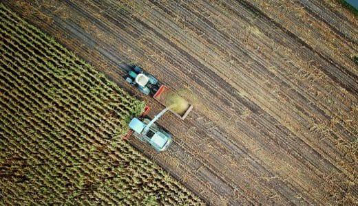 公務員の農業【兼業・副業】収入・仕事・許可範囲・補助金制度